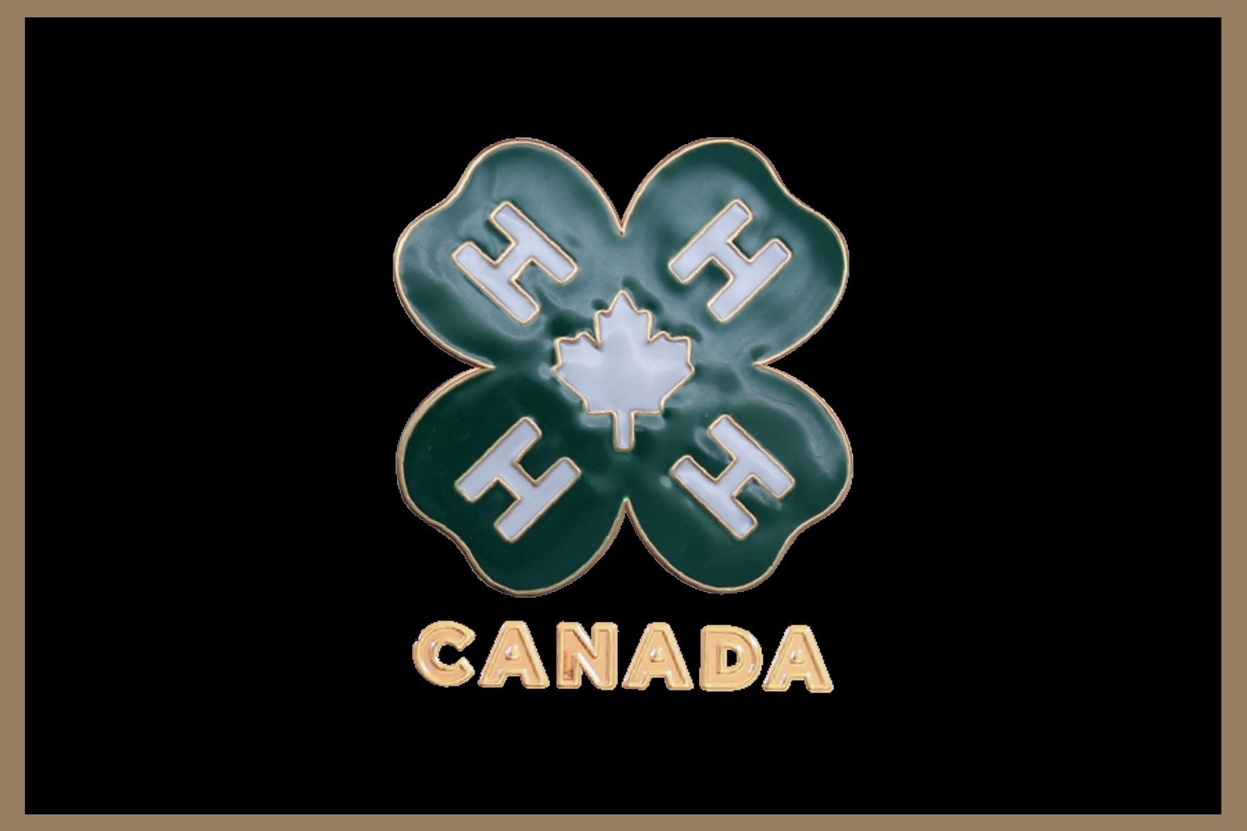 4-H logo with Color