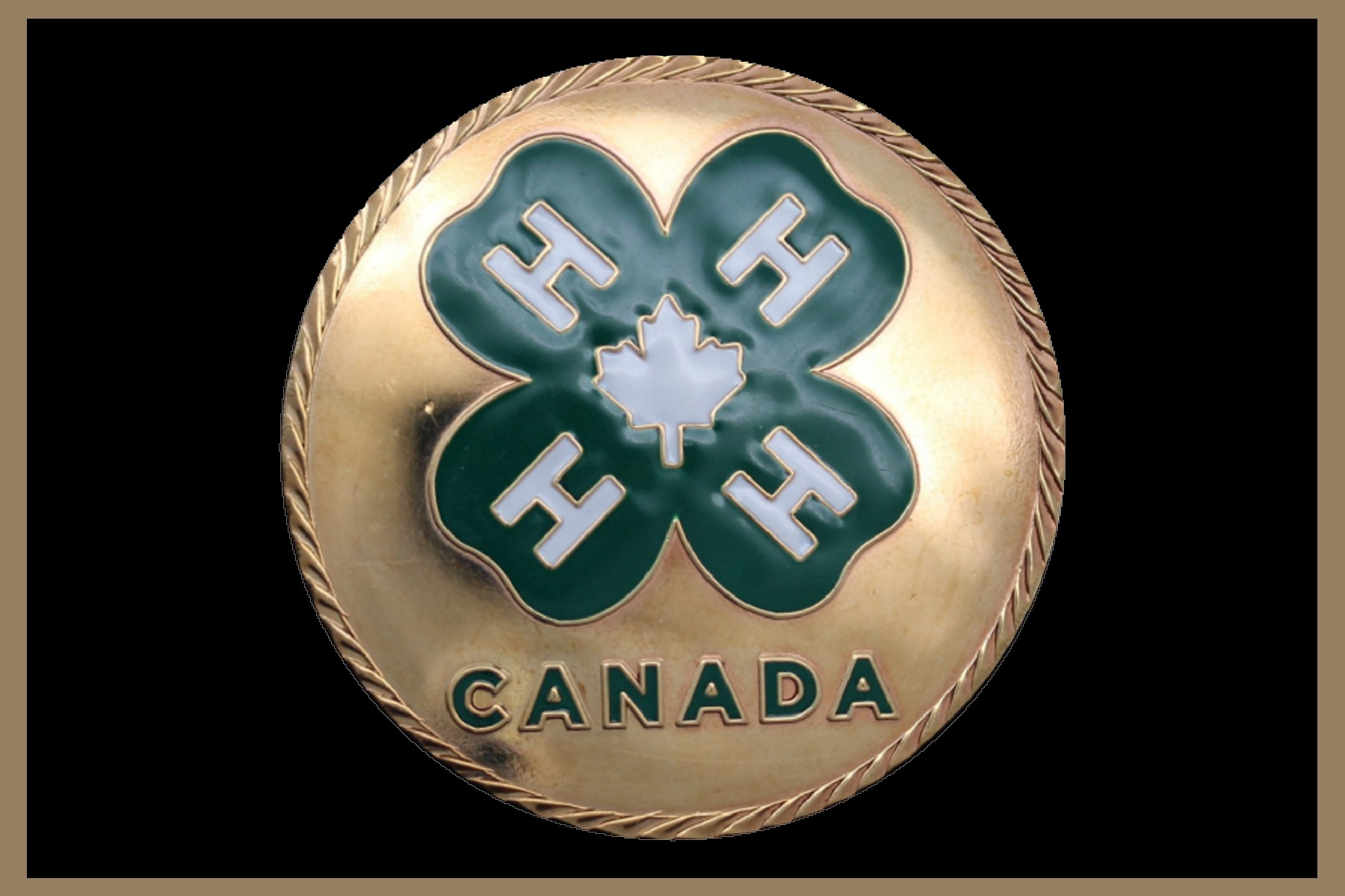 4-H logo with color Medallion