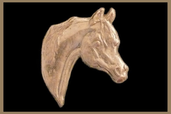 Arabian head