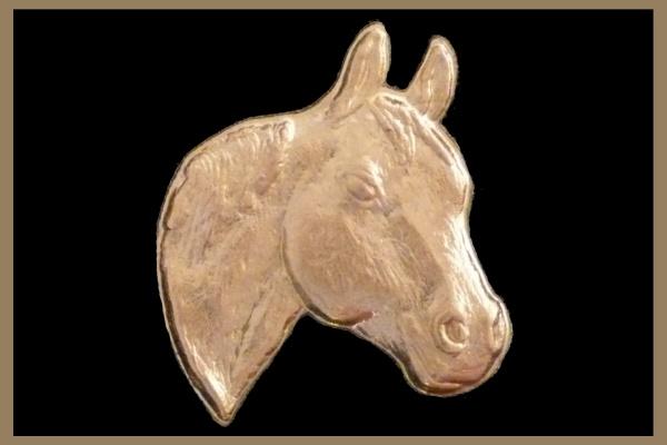 Quarter Horse Head